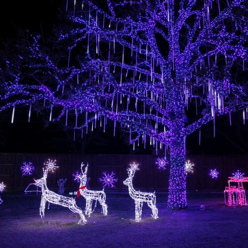 Daystar Christmas Lights