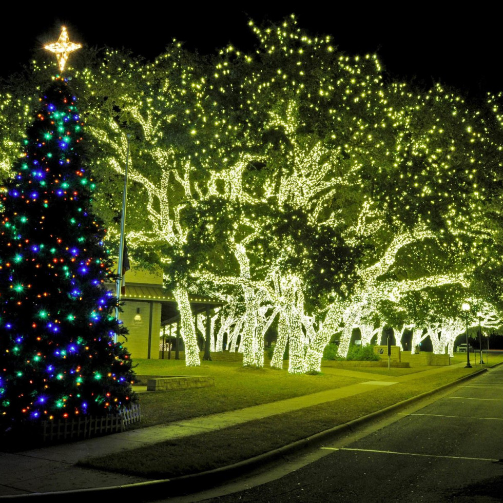 LBJ Johnson City Christmas lights, tree