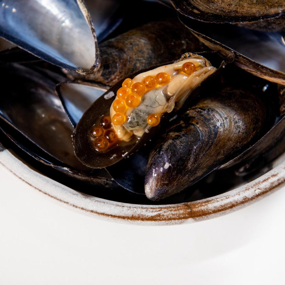 Degust mussel