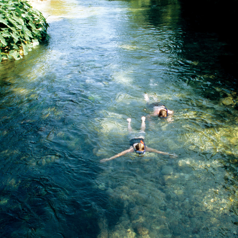 Snorkeling in the San Marcos River