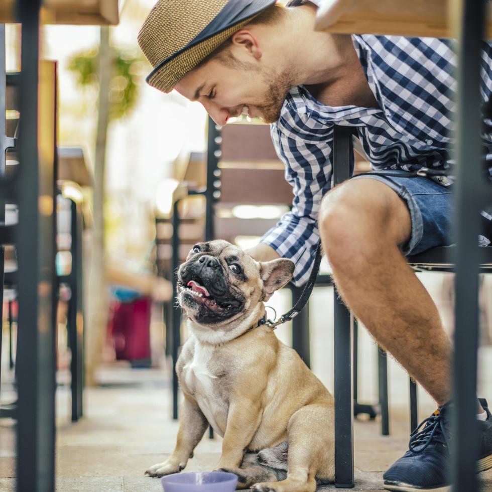 Pucci Cafe & Pet Boutique Houston Katy