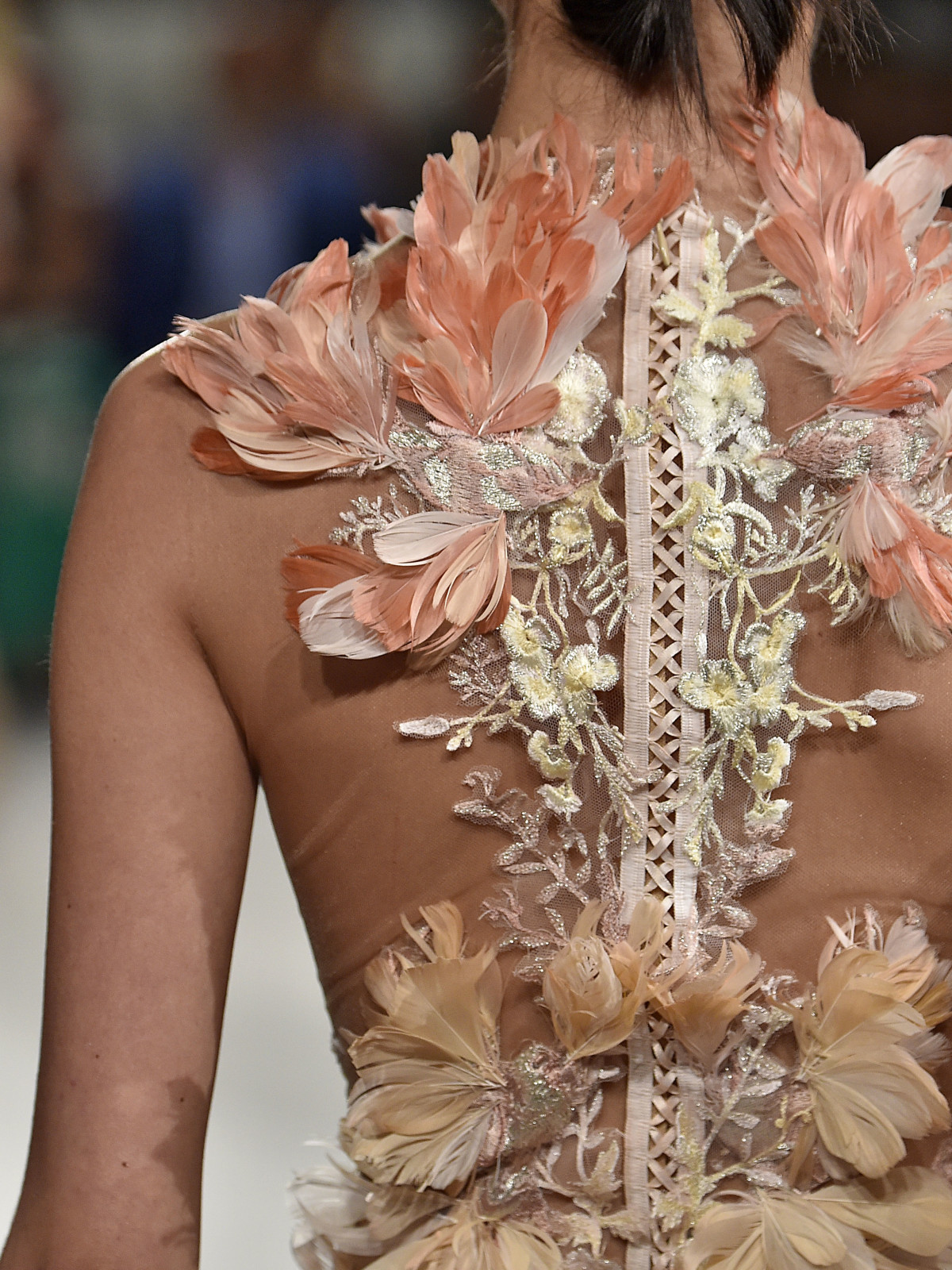 4ad7ceae Marchesa spring 2016 collection from back view. Detail on gowns includes  feathers and intricate embroidery.