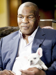 News_Mike Tyson_The Hangover