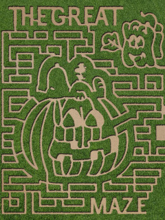 Barton Hill Farms' 4th Annual Fall Festival & Great Pumpkin Maze