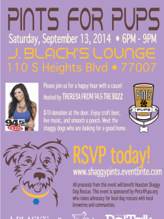"""Pints for Pups"" benefiting Houston Shaggy Dog"