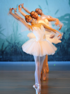 "Houston Repertoire Ballet presents ""Celebration of Dance"""