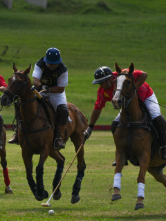 Central Texas Polo Association presents Centennial Cup Polo Tournament