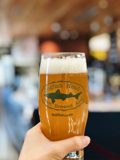 Dogfish Head pint glass
