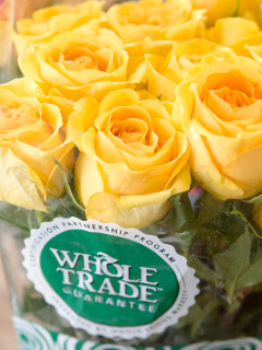 Places-Shopping-Whole Foods Market-Woodway-roses