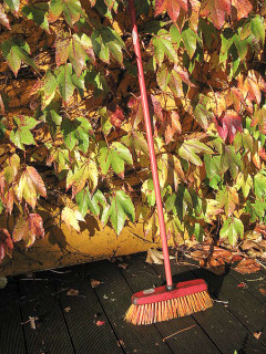 News-Blowhards-Oct. 2009-broom with leaves