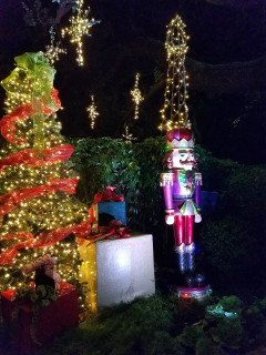 Dallas by Chocolate Tours presents Christmas Lights, Chocolate & Sips Tours