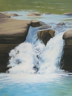 """""""Woodland Waters: Allures of the Ozarks"""" opening reception"""