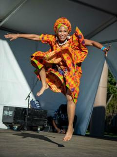 Houston African Festival