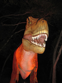 Heard Natural Science Museum & Wildlife Sanctuary presents Halloween at the Heard