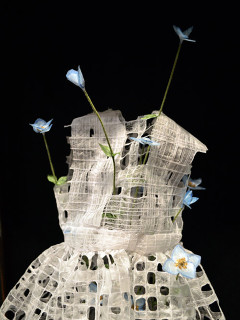 Moncrief Cancer Institute and TCU School of Art present Emily Chase: Efflorescence