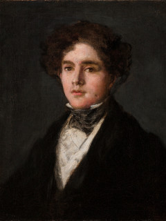 Goya's Portrait of Mariano Goya, the Artist's Grandson