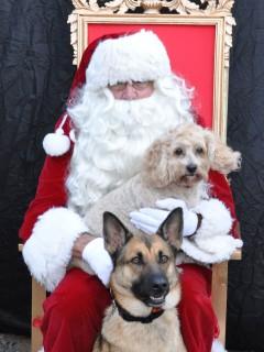 Jingle Bell Bark & Brew
