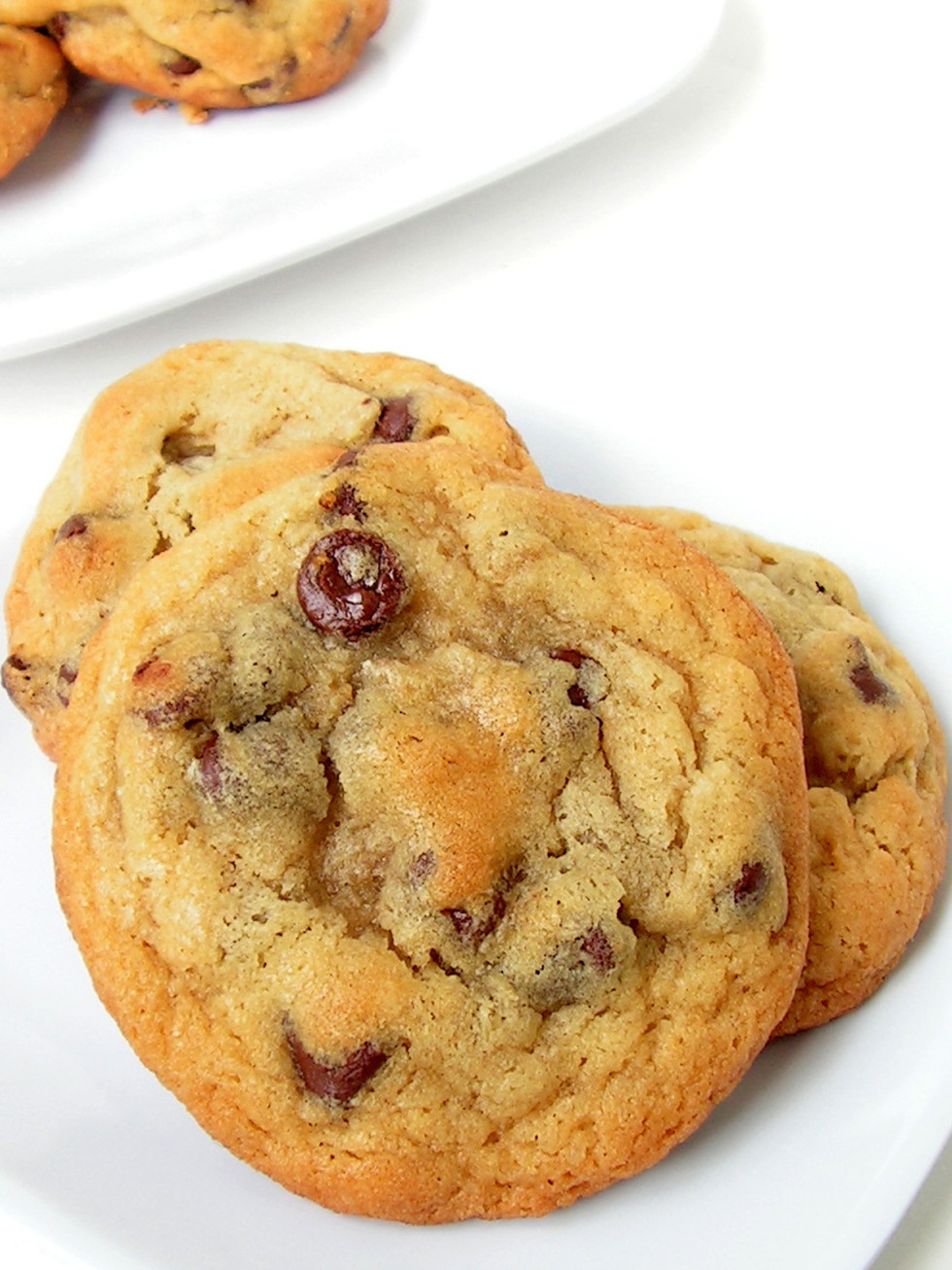 Chocolate chip cookies at Tiny Boxwoods