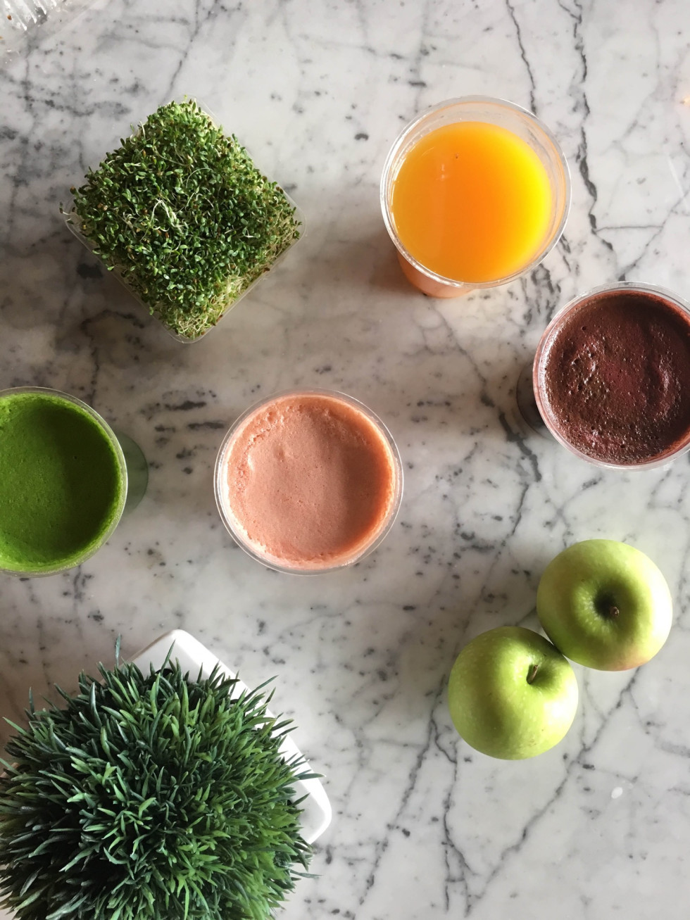Bebidas juice bar juice selection