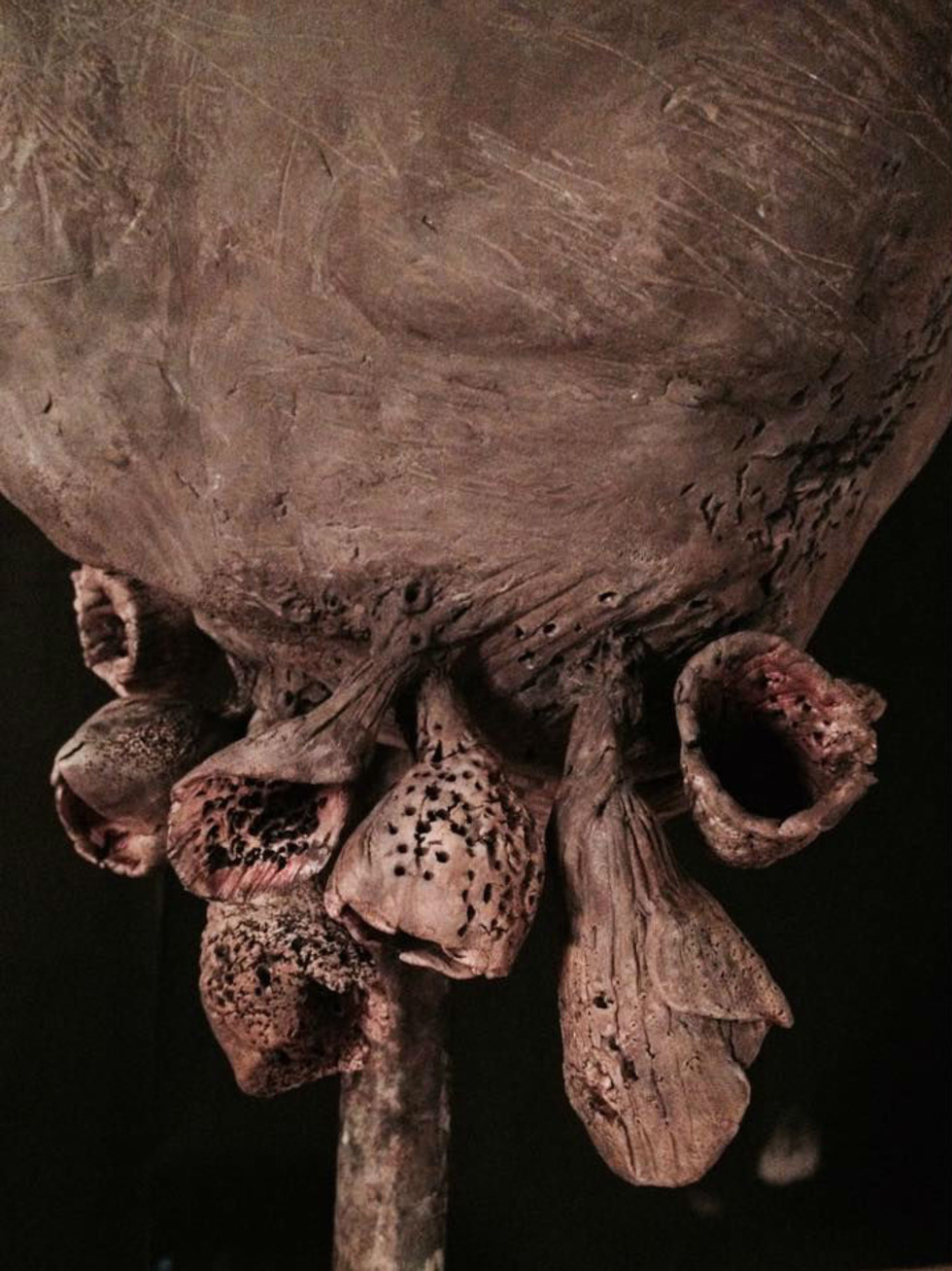 "Dimension Gallery ""Emergence"" by Alejandra Almuelle"
