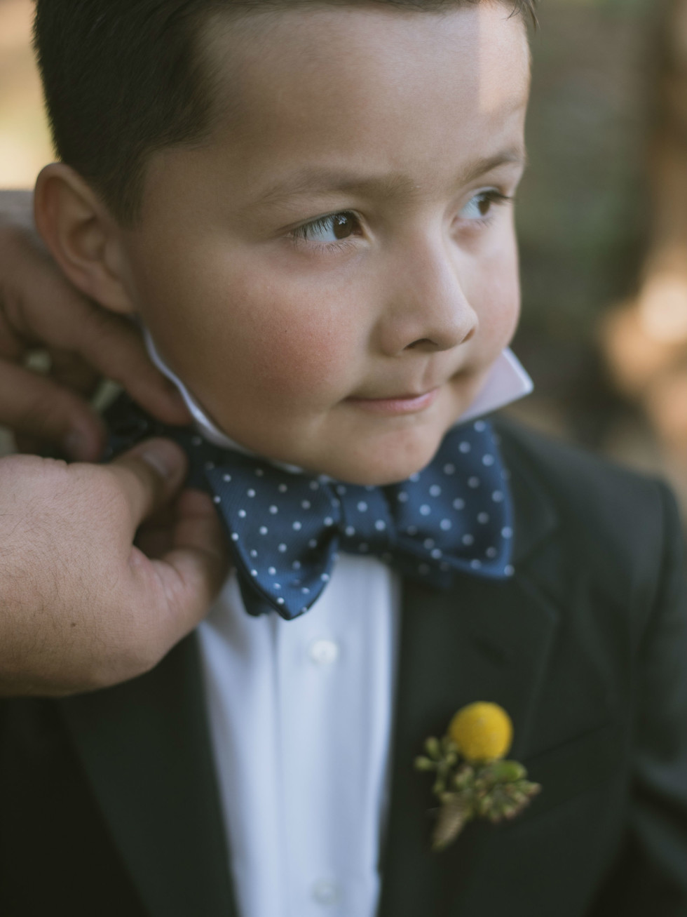 Heritage House wedding ring bearer