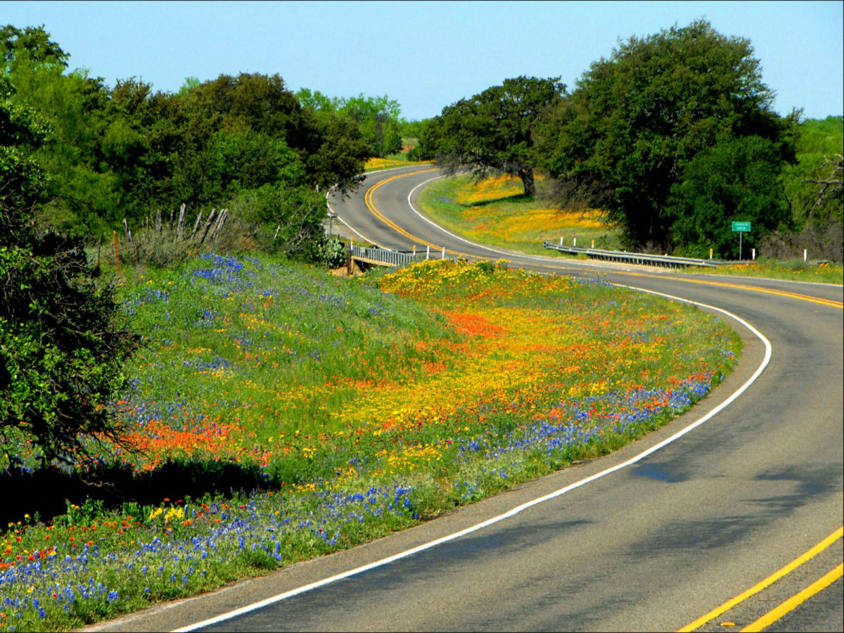Where to see beautiful bluebonnets in the Texas Hill Country ... on