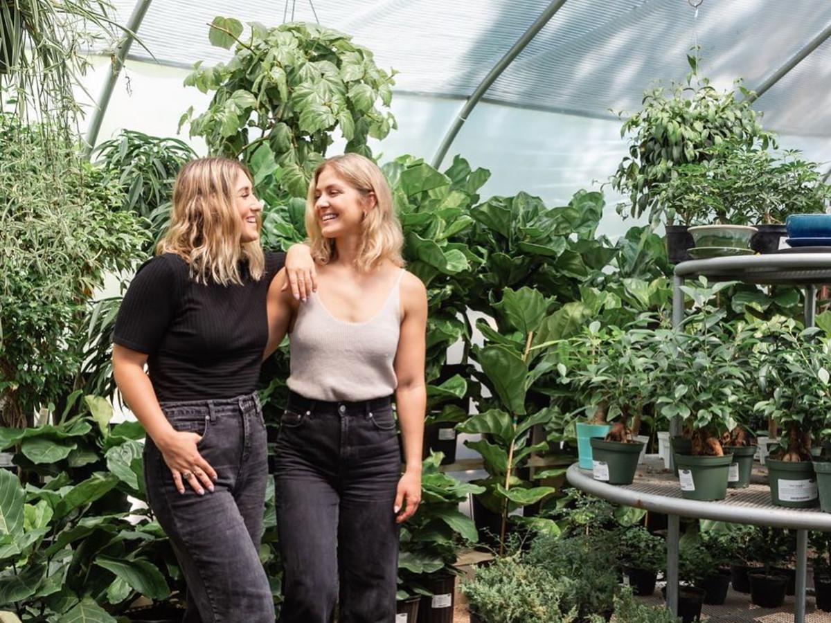 Austin sisters light up CBD cannabis oil scene with Burnet