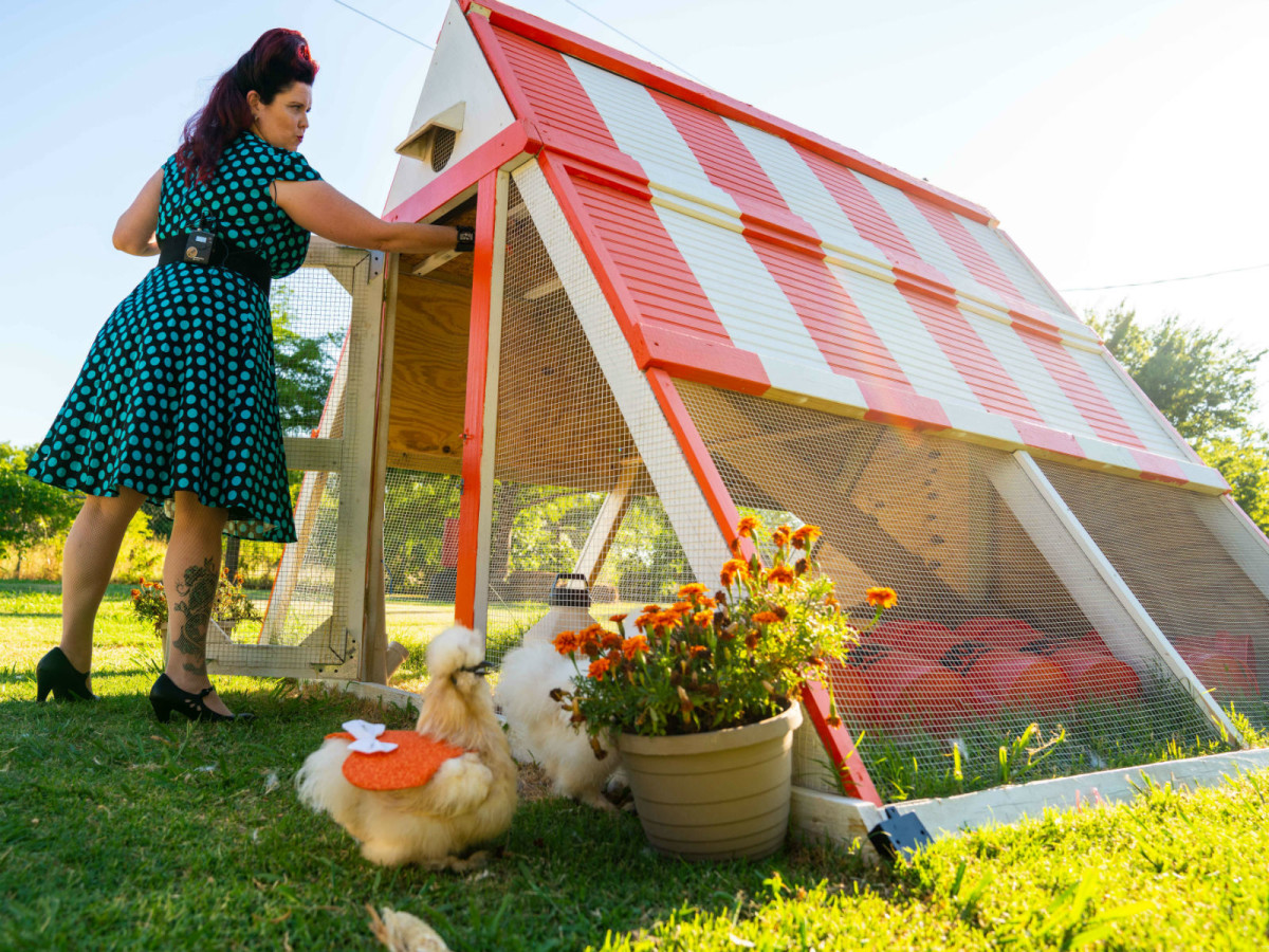 Fort Worth woman builds chicken coop shaped like her fave