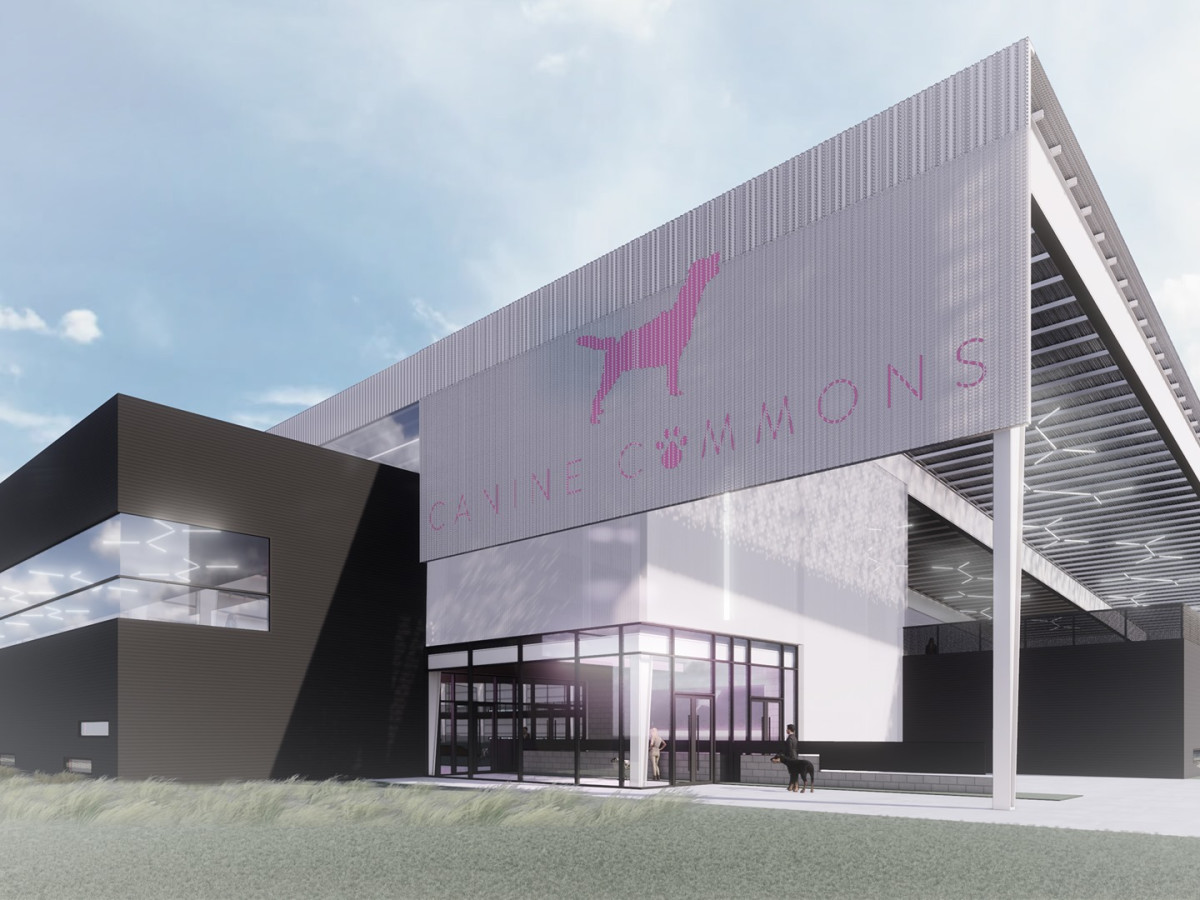 16 Million Project Brings Expansive Indoor Dog Park To