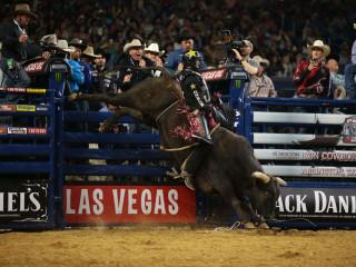 PBR Iron Cowboy