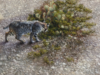 Southwest Gallery presents Robert Fobear: Nature Embracing Wildlife
