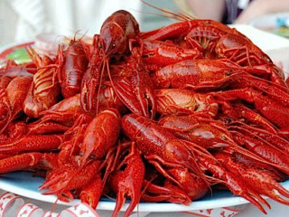 First Annual City of Friendswood Crawfish Festival