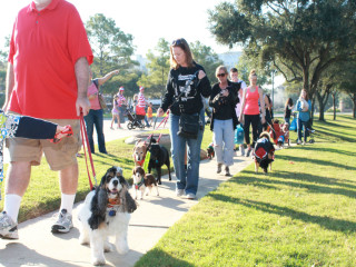 Howl-O-Ween Dog Walk & Costume Contest