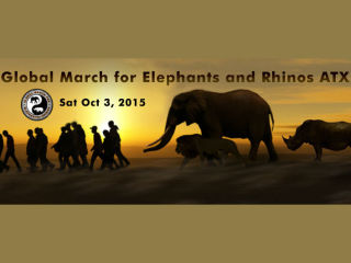 Global March For Elephants and Rhinos - Austin TX