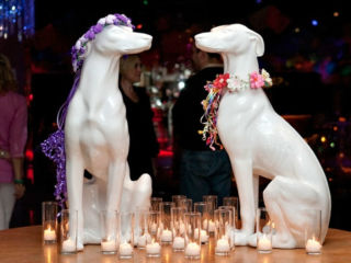 Kitchen Dog Theater presents Hooch & Pooch