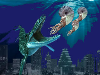 Paleontological Society of Austin presents 25th Annual Fossil Fest