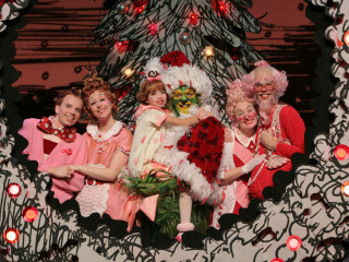 How The Grinch Stole Christmas Musical.Dr Seuss How The Grinch Stole Christmas The Musical