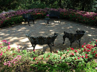 Photography In The Gardens At Bayou Bend Event Culturemap Houston