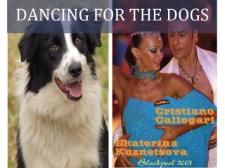 "All Border Collie Rescue hosts ""Dancing for the Dogs"""