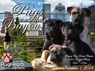 """Pugs on the Bayou"" benefiting PugHearts Houston Pug Rescue"