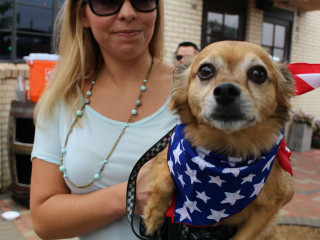 Dallas Pets Alive! presents 2017 Pup Crawl