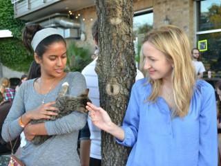 Blue Cat Cafe Austin Kitty Limits event 2015