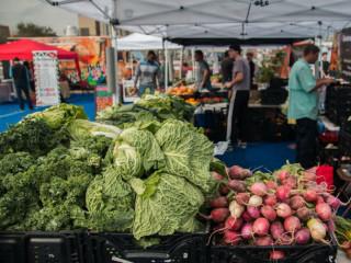 Blue Field Market