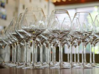 Wine Tasting wine glasses