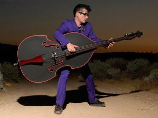 The Stray Cat Lee Rocker