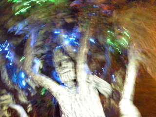 News_Steven Thomson_Earth Day_scary tree