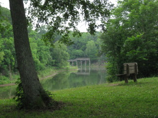 News_Peter Barnes_Brazos Bend State Park_bench_bridge