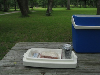 News_Peter Barnes_Brazos Bend State Park_picnic_lunch