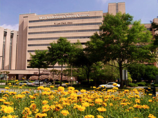 News_medical_M.D. Anderson Cancer Center_by M.D. Anderson_placeholder