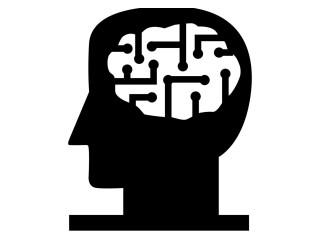 Aging Mind Foundation
